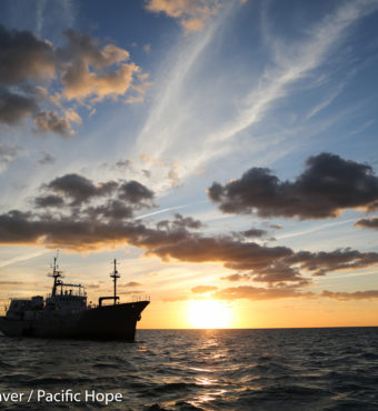 Pacific Hope at Sunset